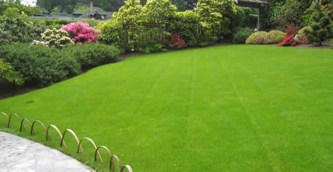 Lawn Care Ogden Ut Chop Chop Landscaping Ogden Ut